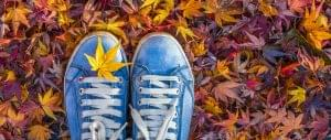 Fall Travel: It's Not Just for Leaf Peepers