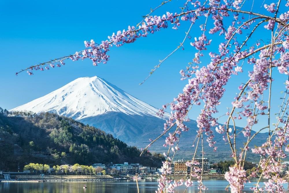 View on Mt Fuji