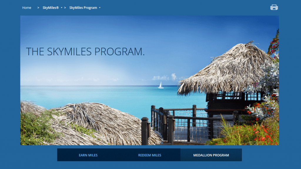 Delta's new SkyMiles program