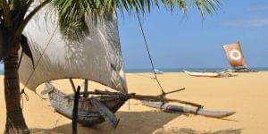 Sri Lanka: Bountiful Biodiversity and Tranquil Temples