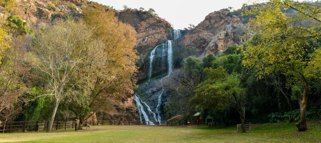 Johannesburg: Gateway to Safari Country