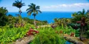 Fly to Maui and Kauai in Hawaii With Miles