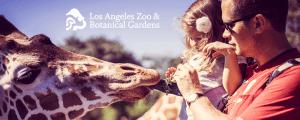 Los Angeles Zoo Celebrates 50 Years of Animal Fun