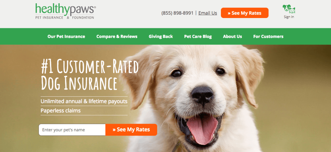 Healthy Paws Pet Insurance & Foundation covers your pooch from head to paw—for a lifetime