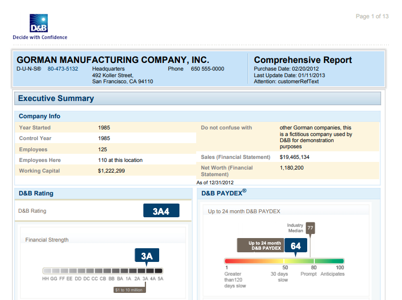 D&B Comprehensive Report Sample,D&B Comprehensive Report Sample
