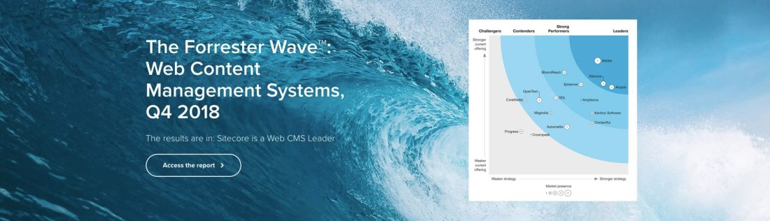The Forrester Wave™: Web Content Management Systems